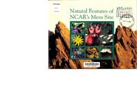 Natural Features of NCAR's Mesa Site