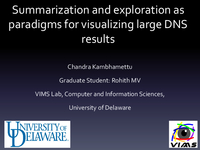 Summarization and exploration as paradigms for visualizing large DNS results