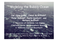 Modeling the bubbly ocean