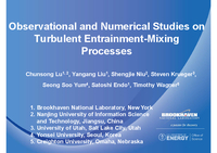 Observational and numerical studies on turbulent entrainment-mixing processes