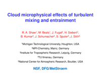 Cloud microphysical effects of turbulent mixing and entrainment
