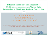 Effect of turbulent enhancement of collision-coalescence on warm rain formation in maritime shallow convection