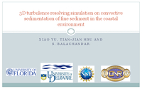 3D turbulence resolving simulation on convective sedimentation of fine sediment in the coastal environment