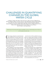 Challenges in quantifying changes in the global water cycle