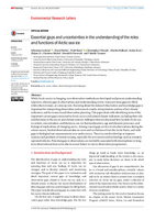 Essential gaps and uncertainties in the understanding of the roles and functions of Arctic sea ice