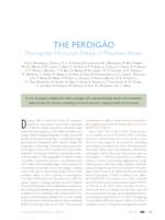 The Perdigão: Peering into microscale details of mountain winds