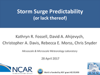 Storm surge predictability (or lack thereof) [presentation]