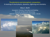 Thunderstorms and atmospheric composition: A meeting of cloud physics, dynamics, lightning, and chemistry [presentation]