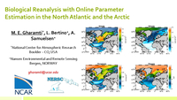 Biological reanalysis with online parameter estimation in the North Atlantic and the Arctic