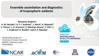 Ensemble assimilation and diagnostics of tropospheric oxidants