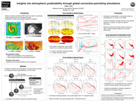 Insights into atmospheric predictability through global convection-permitting simulations