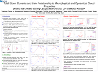 Total storm currents and their relationship to microphysical and dynamical cloud properties [poster]