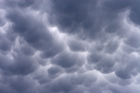 Mammatus cloud (DI01440), Photo by Carlye Calvin