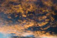 Stratocumulus clouds at sunset (DI01443), Photo by Carlye Calvin