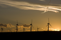 Wind farm at sunset (DI01921)