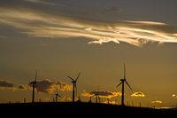 Wind farm at sunset (DI01922)