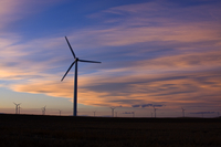 Wind farm at sunset (DI01924)