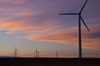 Wind farm at sunset (DI01926)