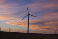 Wind farm at sunset (DI01929)