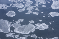Aerial view of sea ice near Anchorage, Alaska (DI01972)