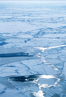 Broken ice in Arctic ocean (DI00194), Photo by James Hannigan