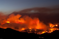 Fourmile fire (DI02241) Photo by Patrick Cullis