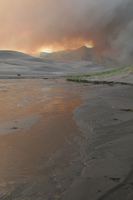 Wildfire in Great Sand Dunes National Park (DI02266) Photo by David Hosansky