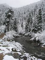 Boulder Creek in winter (DI02593)