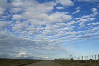 Altocumulus cloud filled sky (DI02674), Photograph by Carlye Calvin
