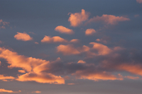 Pink clouds (DI02699), Photograph by Carlye Calvin