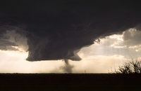 Wall cloud with emerging tornado (DI02715), Photograph by Greg Thompson