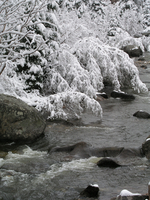 Boulder Creek in winter (DI01576)