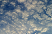 Altocumulus clouds (DI01777)
