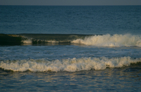 The surf along the Outer Banks (DI02045) Photo by Carlye Calvin