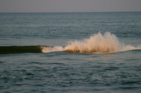 The surf along the Outer Banks (DI02046) Photo by Carlye Calvin