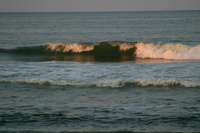 The surf along the Outer Banks (DI02047) Photo by Carlye Calvin