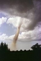 Tornado (1 of 5) (DI00555), Photo by Linda Lusk
