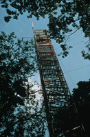 Instrumented tower at EXPRESSO program (DI00758), Photo by Lee Klinger