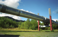 Alaska Pipeline (DI01051) Photo by Zhenya Gallon