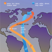 Ocean Circulation Cycle Illustration (DI01057)
