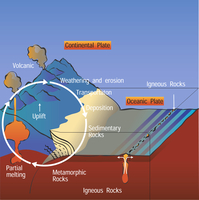Rock Cycle Illustration (DI01058)