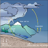 Water Cycle Illustration (DI01059)