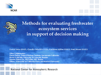 Methods for evaluating freshwater ecosystem services in support of decision making