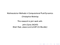 Multiresolution methods in computational fluid dynamics [presentation]