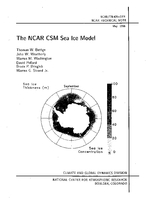 The NCAR CSM Sea Ice Model