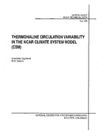 Thermohaline Circulation Variability in the NCAR Climate System Model (CSM)