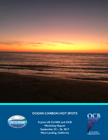 Ocean Carbon Hot Spots: A US CLIVAR and OCB Workshop Report