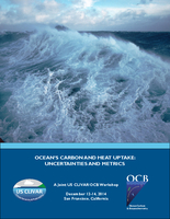 Ocean's Carbon and Heat Uptake: Uncertainties and Metrics